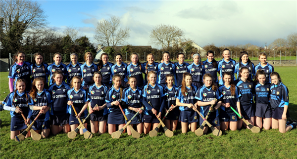 Win for St. Brigid's Camogie